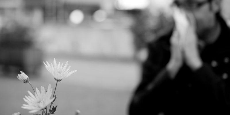 Lindra din pollenallergi